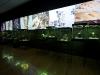 AngloGold Ashanti e IBGM - Exposição Bienal do Design l 2012 l Museu de Artes e Ofícios - Belo Horizonte/MG